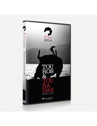 Touros & Touradas (1ª Parte)