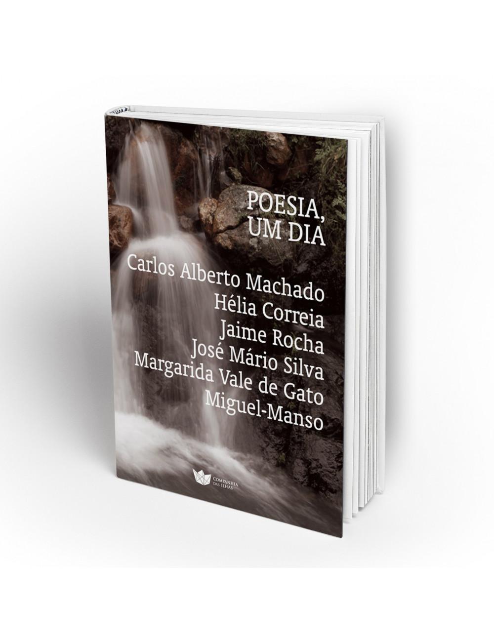 """""""Poesia, um Dia"""" Several Authors"""